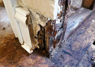 Replacing interior walls that experienced rot.